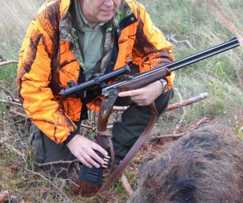 polowanie na dzika