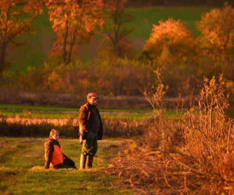 polowanie jesienią