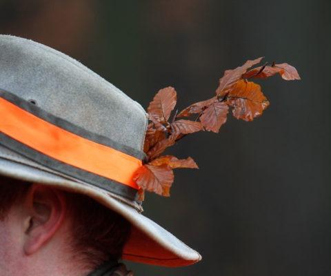 liście w czapce